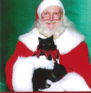 Dolce the cat sitting on Santa's lap