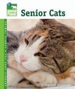 seniorcats