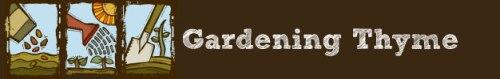 gardening thyme