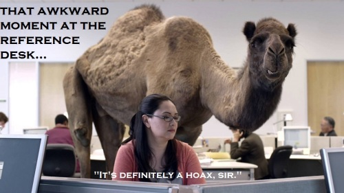 humpday-camel.jpg.crop_display