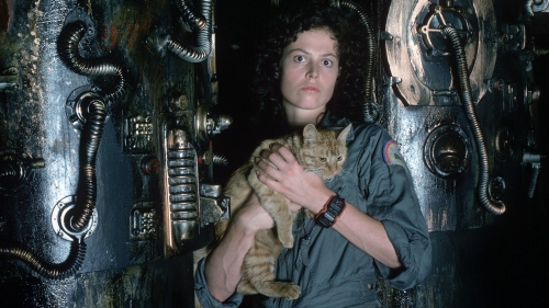Save the cat, kill the alien. Image from: http://io9.com/